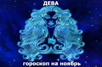 Дева : гороскоп на месяц ноябрь 2019