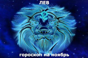 Лев : гороскоп на месяц ноябрь 2019